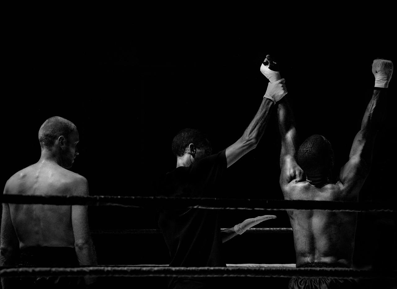 boxing-555735_1280